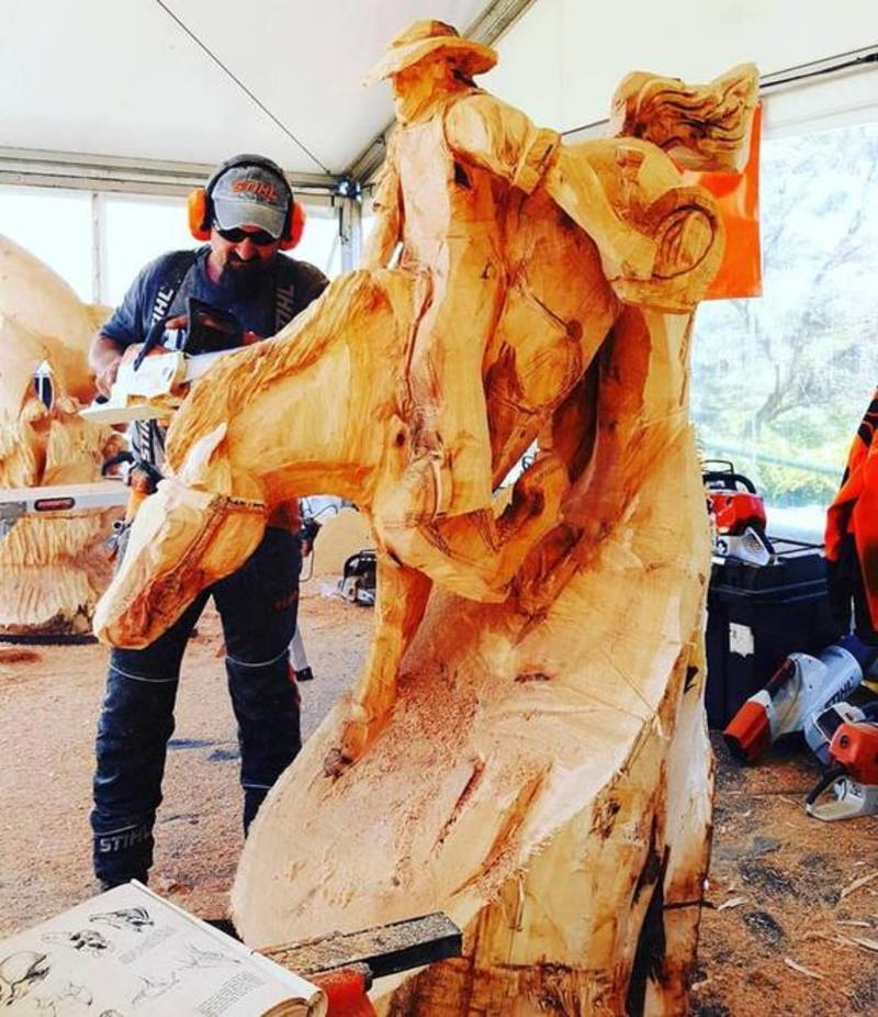Australian Chainsaw Carving Championships - Australian Chainsaw Carving Championships