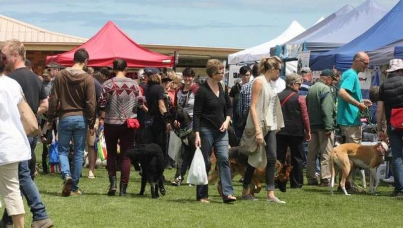 Big Day Out for Dogs and Canine Christmas Market - Big Day Out for Dogs and Canine Christmas Market